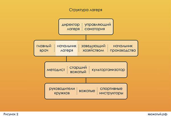 Структура управления детского лагеря